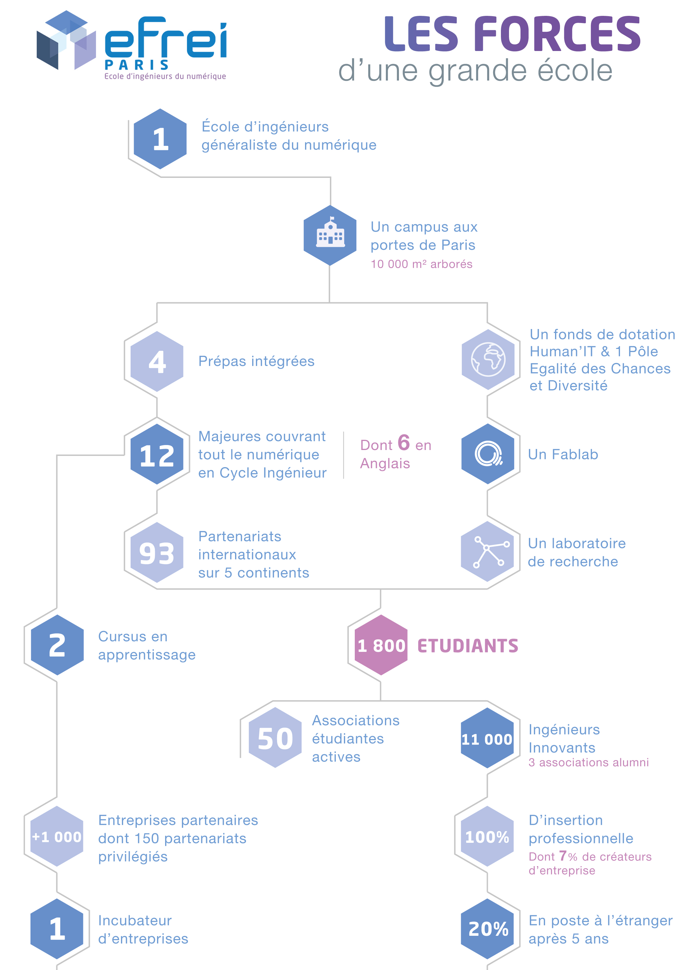 Les forces de l'EFREI infographie