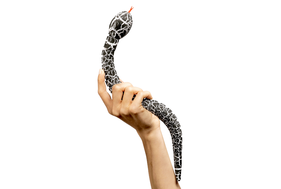 Développeur d'application - Python