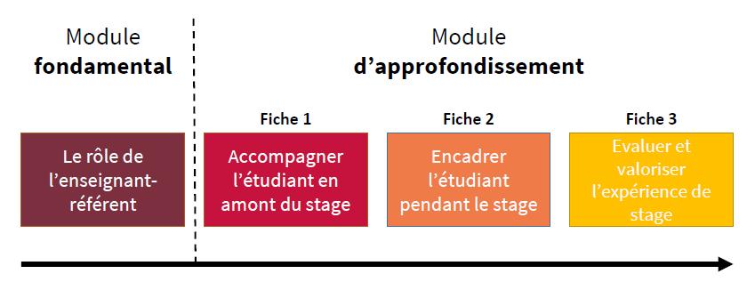 Organisation des modules